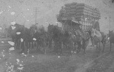 chatade 1915